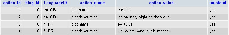 Exemple de la table wp_zd_ml_options