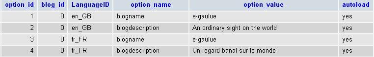 Exemple de la table wp_zd_ml_options