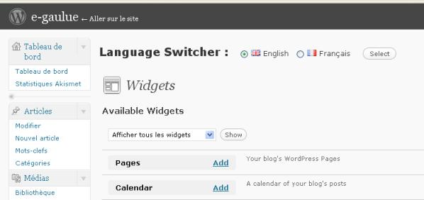 Copie d'écran du sélecteur de langue dans le gestionnaire de widget